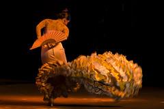 flamenco-sardinha (Sardinha ><((((º>) Tags: flamenco flamencodance dançaflamenca eduardosardinha danzaflamenca sardinha17 flamencophotos fotoflamenca