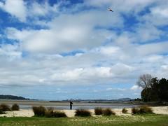 Lenkdrachen Am Strand der Te Atatu Peninsula