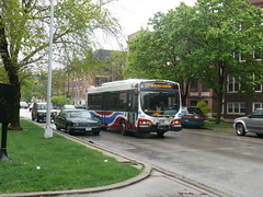 20100425 22 CTA bus, Hyde Park Blvd. near Woodlawn Ave. (davidwilson1949) Tags: chicago bus illinois cta transit hydepark optima