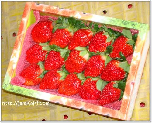 strawberryBOX15