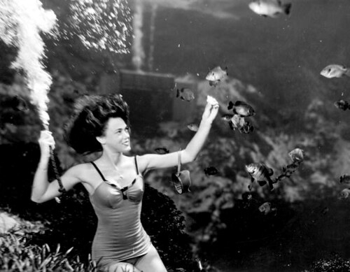 Frances Dwight feeding the fish as a part of the underwater show at Weeki Wachee Springs (Фото из Библиотеки Конгресса США)