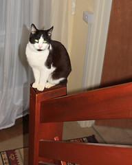 Aimee tries a new vantage point
