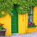 Ireland Study Abroad
