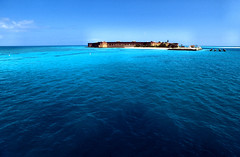 dry tortugas - with penguins (Csbr) Tags: ocean travel blue camping sea west color film beach nature water garden landscape mexico fun island penguin march nationalpark spring key paradise gulf florida fort turquoise south azure slide scan atlantic m42 tropical fujifilm caribbean 20mm fortress provia 2009 mir fortjefferson drytortugas 100f rdpiii voigtlanderbessaflex 3520mm gettyscreening