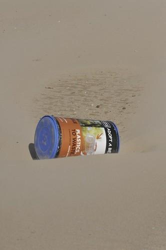 windy day in venice beach
