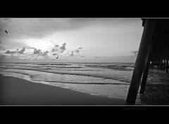Garden City I (Brandon.Shuler) Tags: ocean sky bw bird beach sc water birds sunrise myrtlebeach pier nikon skies tripod southcarolina tokina1224 1224mm manfrotto gardencity d80 nikond80 gardencitypier d80sunrise