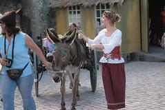 (alfacew) Tags: medieval mercado bidos