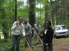 Green Team Summer work