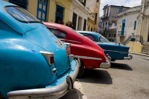 3 Havana Beauties