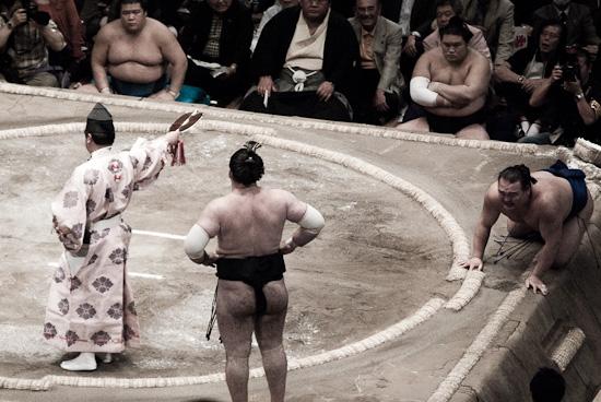 sumo_wrestling_5913