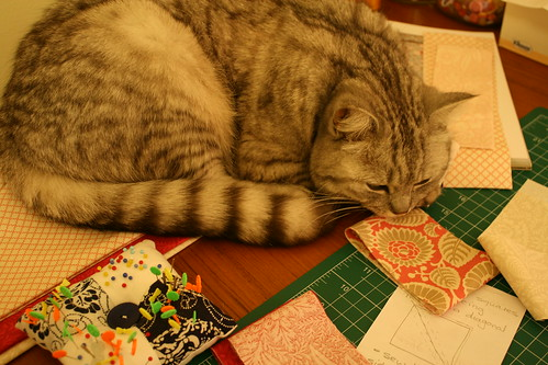my quilting companion
