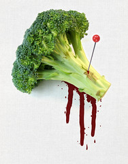 2: does broccoli bleed? (omgstephanie) Tags: photoshop broccoli bleed photoillustration msced sgliozzo