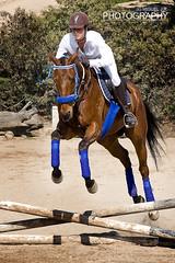 Equitacin (Miguel J.R.) Tags: horse animal caballo nikon salto galope hipica d40 equitacion