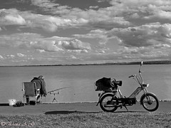 Pescador (Wondering Why Pics) Tags: bw lake insectos color colour byn water car birds animals lago agua hungary insects olympus coche pajaros animales balaton hungría e520