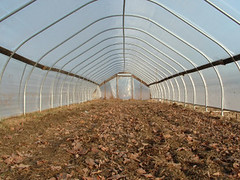 Hoop house greenhouses