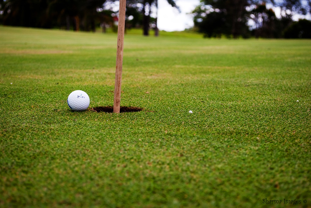 Day 002 | January 02, 2009 | Golfing
