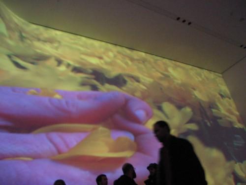 IMG_9520 Pipilotti Rist at MoMA