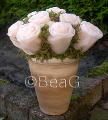 Roses, soft pink (Made by BeaG) Tags: pink flowers original roses home floral creativity design pretty artist candle belgium designer recycled handmade unique oneofakind ooak kunst decoration belgi creation wax recycle rozen unica reuse unicum homedecoration beag kaarsvet kunstenares tissueflowers uniquedesign ontwerpster originaldesigner creativedesigner tissueroses waxedtissueroses tissueandwaxflowers designedandmadebybeag uniekontwerp ontworpenengemaaktdoorbeag tissueandwaxroses tissueandcandlewaxroses makingtissueroses makingrosesoutoftissues makingtissueandwaxroses makingrosesoutoftissuesandwax makingflowersoutoftissuesandcandles rozenmakenuitpapierenzakdoekjes roosjesmakenuitpapierenzakdoekjes roosjesmakenvanpapierenzakdoekjesenkaarsvet bloemenmakenvanpapierenzakdoekjes bloemenmakenvanpapierenzakdoekjesenkaarsvet