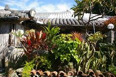 新垣家住宅の植栽