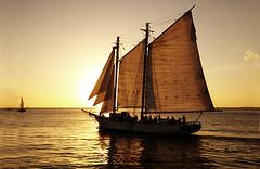 Sailboat in Key West (Edgar Barany) Tags: ocean trip travel sunset orange color water island islands mar nikon key paradise miami colores tropic d200 vacations pictureperfect nikond200 barany skycloudssun goldstaraward edgarbarany