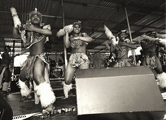Kcap Zulu Cultural Dance Group from South Africa at Tooting London Sepia July 2000 011 group (photographer695) Tags: london sepia 2000 dancing african south july zulu tooting kcap