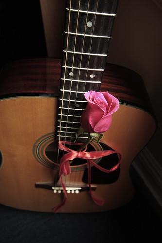Roses 30