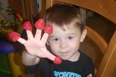 5 Raspberries - 01