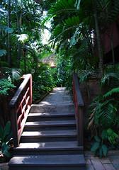 a green step (Paavani) Tags: travel vacation green museum thailand bangkok steps lawn greenery jimthompson ilovegreen paavani ahometurnedintomuseum