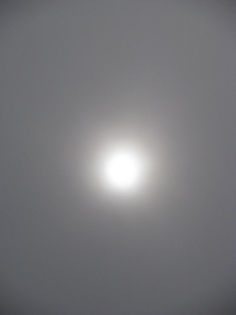 Sole grigio