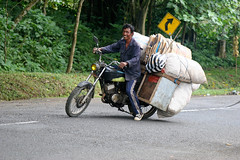 Man on a fully loaded bike in Timor. (cookiesound) Tags: life street trip travel summer vacation bali holiday man men travelling smile work canon indonesia island photography reisen asia asien fotografie urlaub canoneos20d motorbike motorcycle canoneos poeple reise travelphotography traveldiary travelphotos travellingasia reisefotografie travelshots reisefotos reisetagebuch reisebericht travellifestyle cookiesound nisamaier ulrikemaier lifeinindonesia travellingindonesia