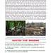 """""""The Importance of Trees in Southwark Life"""" by Kam Hong Leung on 14 May 2009"""