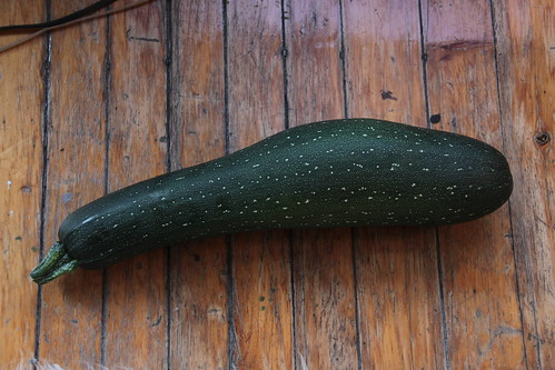 18 Inches of Zuchini...whats a boy to do... Zuchini Preserving Recipes