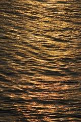 Mar Dorado (Alfredo Rperez) Tags: sol gold mar agua reflejo ola oro estela mywinners ruprez