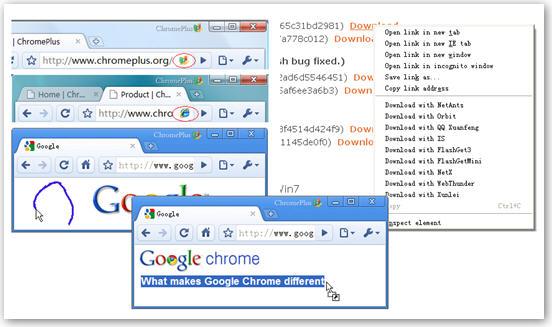 3896720318 eb8d46589e o Chromeplus: 基于Google开源项目Chromium开发的浏览器 @分享网络2.0  盗盗