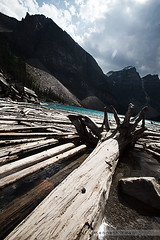 B-logs (Kenneth Kwan) Tags: shadow sky cloud mountain lake canada tree water contrast rockies log wideangle alberta flare trunk rockymountains float root morainelake canoneos5d a02 canonef1635mmf28l kennethkwan
