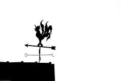 Up on the roof (Eduardo Deboni) Tags: bw upload pb email sillouette silhueta upontheroof notelhado