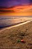 Follonica spiaggia al tramonto 3