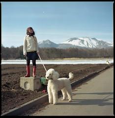 (bensn) Tags: white mountain film field japan zeiss kodak hasselblad poodle carl 100 standard emi f28 portia asama 80mm 500cm ektar