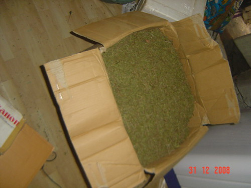 Kratom  kratom on 30 kg semi powder picture photo bild