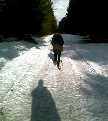 comme une ombre (parcours sant 2-2009) (dafres) Tags: wood trees boy people dog pet snow man clouds forest shadows digitalcameraclub naturepeople peopleenjoyingnature