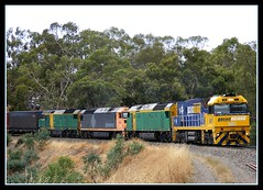 6PM5 (Tom O'Connor.) Tags: park trees belair corner train track pacific south railway loco australia trains an class hills fosters national adelaide locomotive curve nr dl an2 nr1 pacificnational an4 dl43 6pm5 anclassdiesel dl43diesel dlclassdiesel nrclassdiesel an2diesel an4diesel nr1diesel fosterscornersa