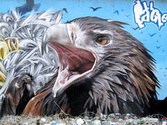 Glasgow (SmugOne) Tags: street uk urban detail bird eye art wall real graffiti scotland photo 3d mural paint artist eagle unitedkingdom glasgow character tag tail letters beak picture scottish style can smug spray letter hiphop spraypaint hip hop graff aerosol tagging wedge aerosolart spraycan realism realistic photorealistic photorealism wedgetail aod illeagle estm teamalosta alosta estum smugone