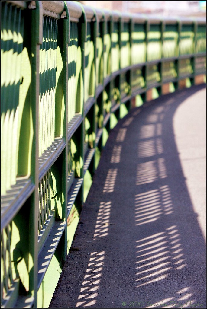 Railing and Shadow