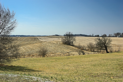 Countryside at Brussels, Calhoun County, Illinois, USA