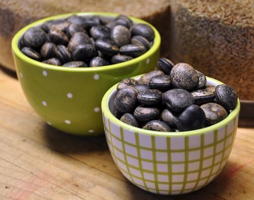 bocacaui seeds