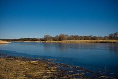 Peconic River (carl derrick) Tags: ny newyork water li longisland northfork riverhead peconic indianislandcountypark