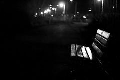 Bayfront bench part II (Raf Ferreira) Tags: b white ontario canada black branco bench w hamilton pb preto mm rafael 50 bayfront hfg ferreira peixoto