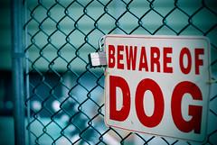 Beware (jami_lee) Tags: dog sign fence lomo gate bokeh lock letters bewareofdog
