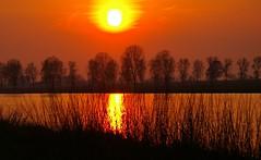 Sunset (ditmaliepaard) Tags: trees sunset sun water zonsondergang bomen zon brabant heusden anawesomeshot bergsemaas