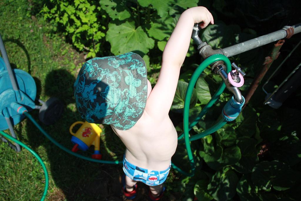 Sommer im Garten 015